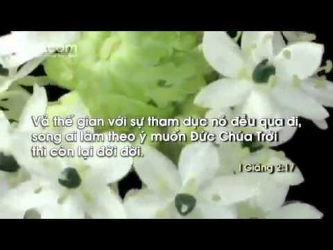 MÙA XUÂN VINH HIỂN