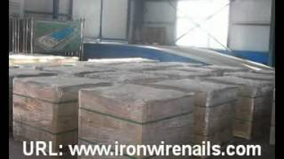 Common Nails, Iron Nails, Wire Nails, Concrete Nails, Roofing Nails, etc.