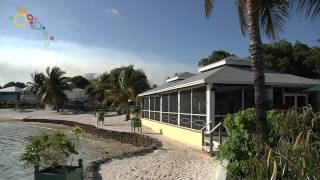 Welcome to The Abaco Islands!