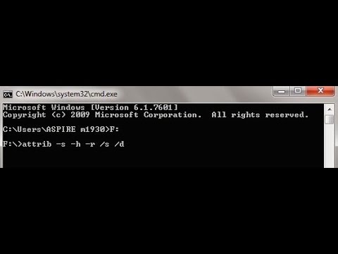 How to show Hidden Files Using cmd In 5 Easy Steps