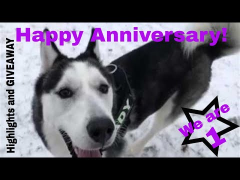 Its our channels upcoming 1st anniversary. Highlights and GIVEAWAY details!