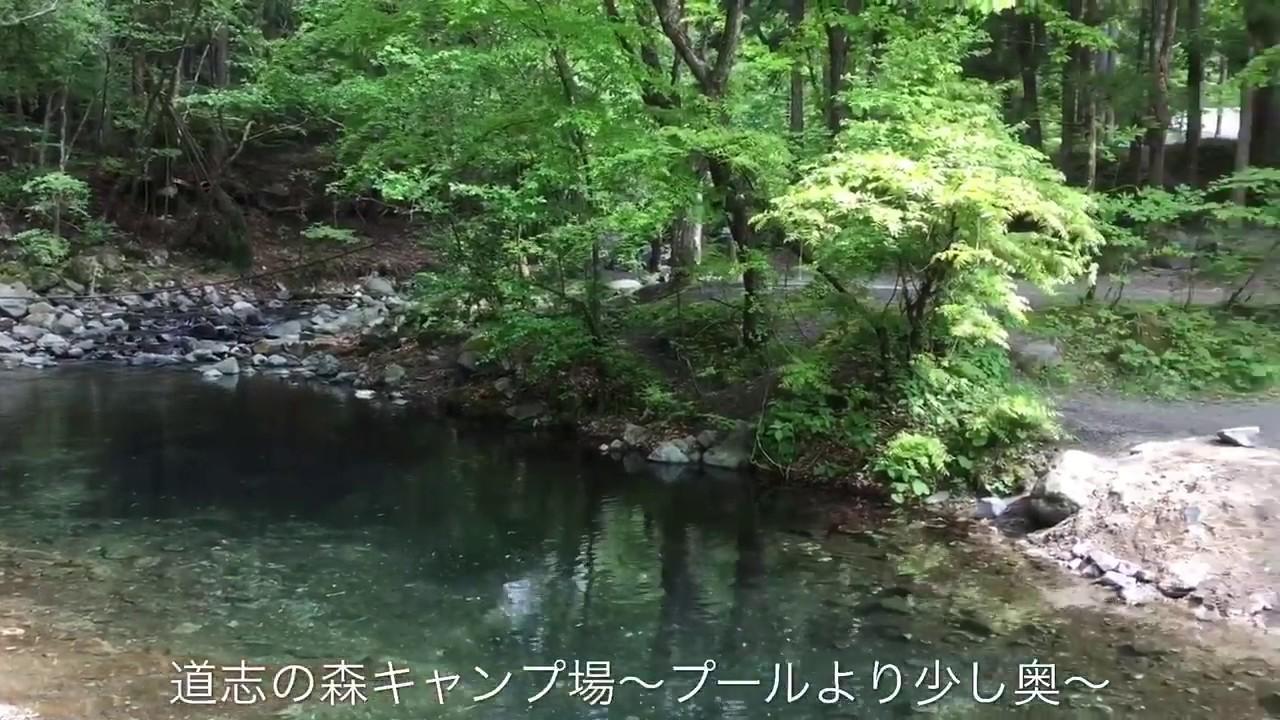 志村 キャンプ 道