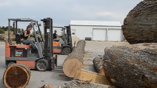 Guy & Gal use 2 Toyota Fork Lift Trucks to Move 33 Foot Oak Log!