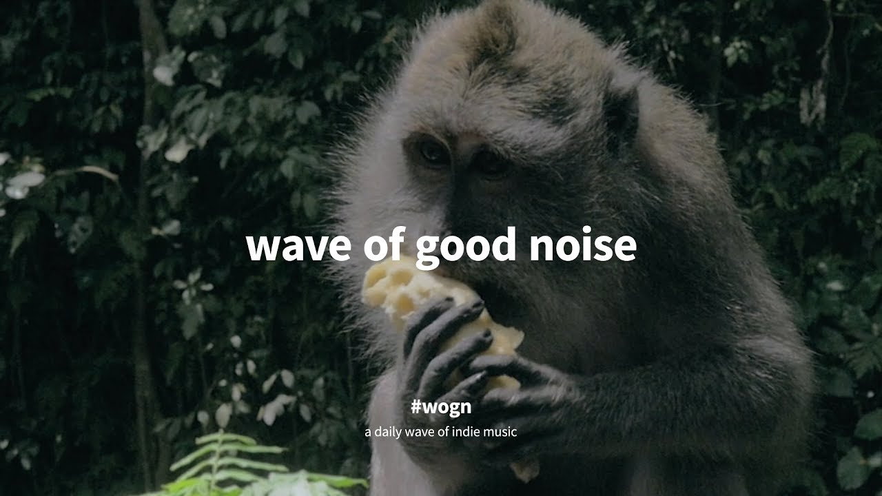 racing-glaciers-caught-in-the-strange-holidays-in-bali-wave-of-good-noise