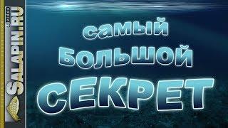 Самый большой рыболовный секрет [salapinru]