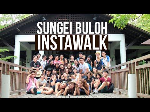 Sungei Buloh #InstaWalk With MNDSingapore and NParks!