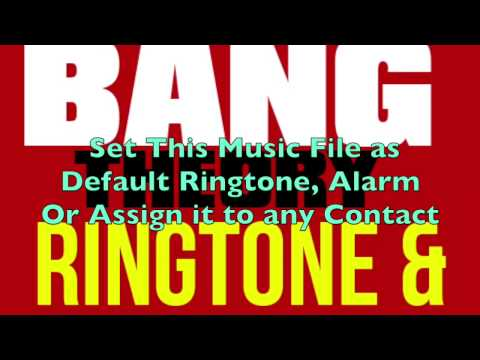 The Big Bang Theory Ringtone and Alert