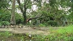 Sarasota after Hurricane Irma