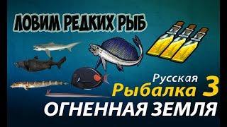 видео Русская Рыбалка 3: Малакост черный