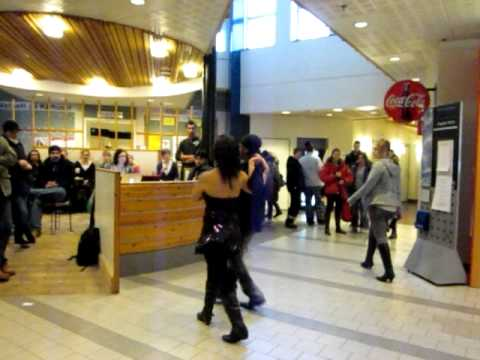 Tropical Sundsvall Is Dancing Salsa At Mid Sweden University - Mid sweden university map