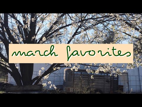 March Favorites // Nct Comeback, Thrifted Finds, Bujo