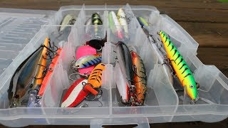 Which Bait Works Best River Pike Fishing