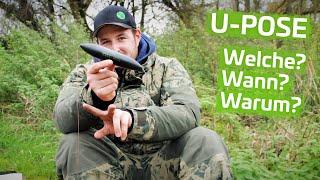 U-POSE Richtig AUSWÄHLEN (Wallerangeln)   Auftrieb, Form, Einsatzgebiet