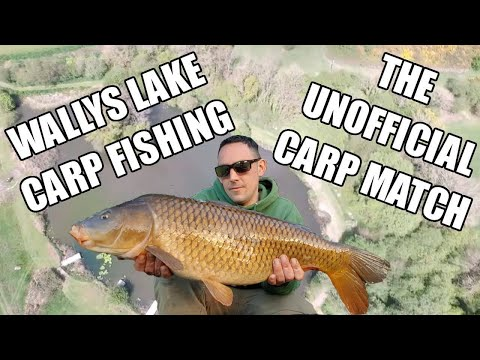 Wallys Lake, Brilliant 24 Hour Session