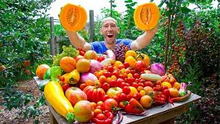Jaw-Dropping September Garden Harטest 😮