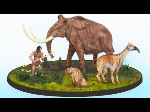 Find Them All: Prehistoric Animals   Eftsei Gaming  