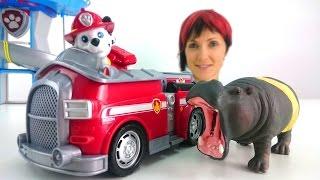 Щенячий Патруль и Маша лечат бегемотика. Играем в доктора. Видео для Детей(Видео для детей и веселые игры для тех, кто любит игрушечные аптечки. Играем в доктора! Сегодня Маша услышал..., 2015-06-27T04:39:52.000Z)
