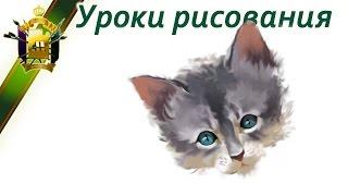 Как нарисовать котенка. Уроки рисования онлайн(Научиться рисовать пошагово: http://color.artatac.ru/risunokbasis.html Уроки рисования: http://artatac.ru/uroki_risovaniia/ В видео формате:..., 2016-08-19T21:28:20.000Z)