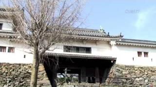 天正13年(1585)に紀州を平定した豊臣秀吉が弟の秀長に築城。秀長の城代...
