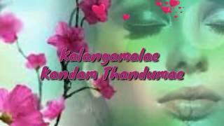 Pesugiren pesugiren  tamil love whatsapp status song  RJ status   Saththam podathey  