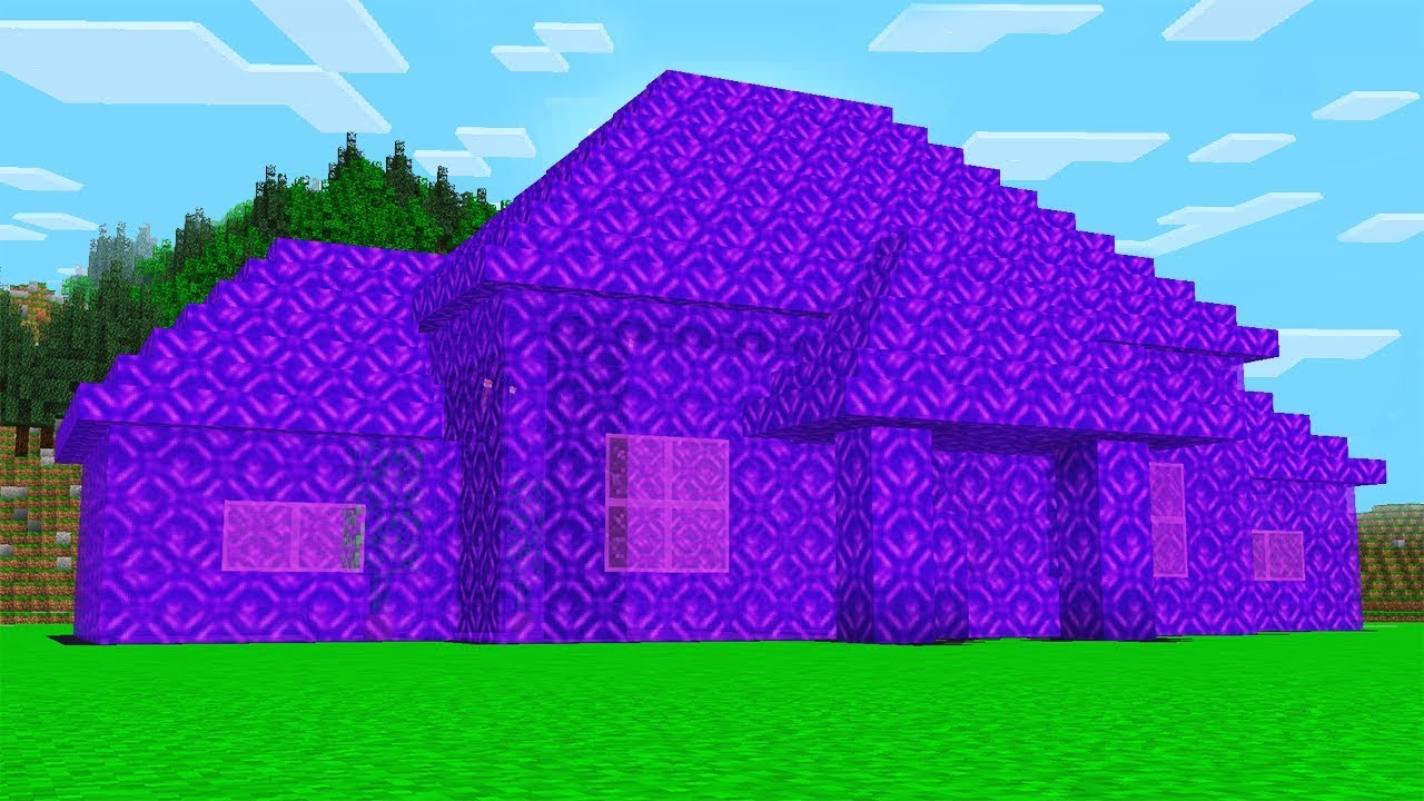 WORLD'S BIGGEST MINECRAFT PORTAL HOUSE!