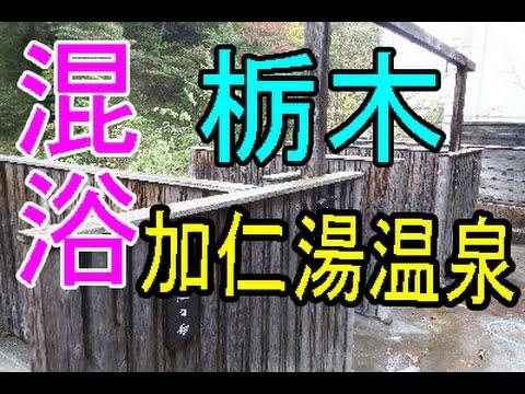 栃木の加仁湯温泉は開放的過ぎた!混浴露天風呂で温泉美人になろう!