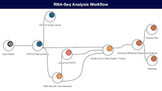 RNA-Seq Features in OmicsBox/Blast2GO