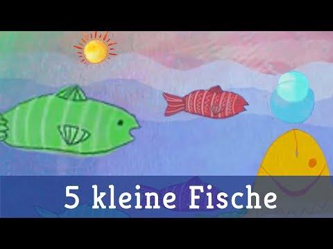 5 kleine fische doovi for Kleine fische