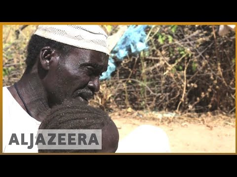 🇸🇸 Refugees from Darfur region heading back home from Chad | Al Jazeera English