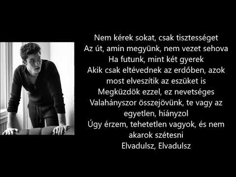 Shawn Mendes - Don't Want Your Love (Magyar felirattal)