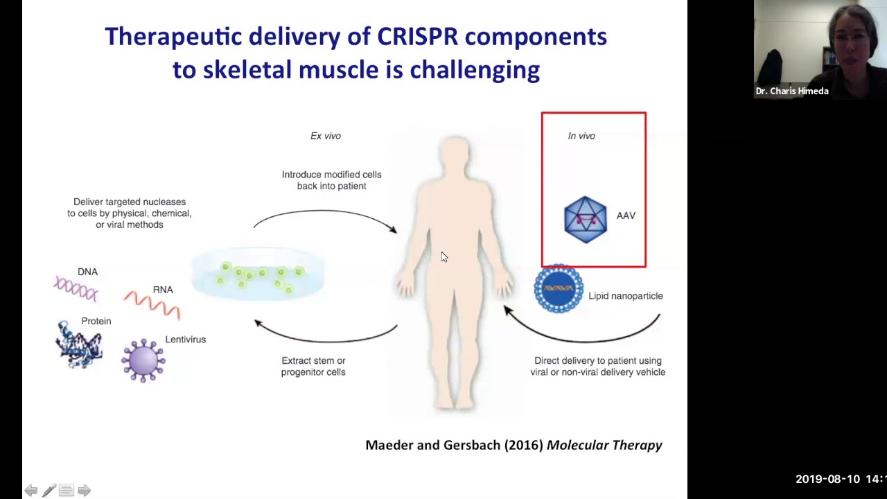 FSHD Society webinar on CRISPR and FSH muscular dystrophy with Charis Himeda