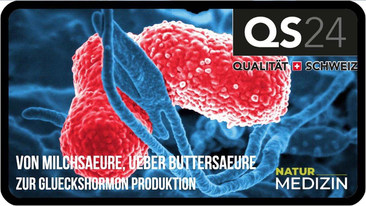 Von Milchsäure, über Buttersäure zur Glückshormon - Produktion | Naturmedizin | QS24 04.10.2019