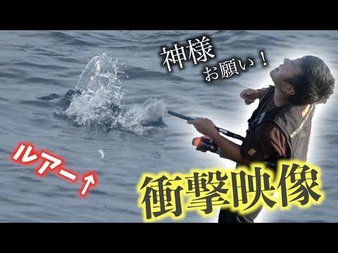 【釣り王国】南大東島で大物を狙う!! 4話