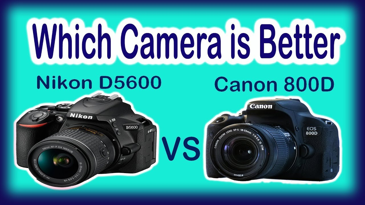 Nikon D5600 Vs Canon 800d Simple And Best Review Youtube