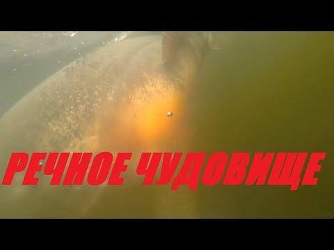 ОХОТА НА РЕЧНОГО МОНСТРА!Я ПРОСТО ОФИГЕЛ!подводная охота на сома 2019!