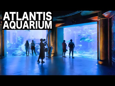 ATLANTIS – The Lost Chambers Aquarium Complete Tour | 4K | Dubai Tourist Attraction
