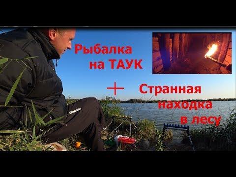 Рыбалка на платнике.Таук,Крым.