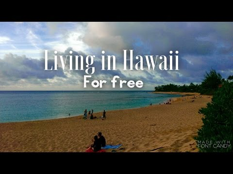 Moving to Hawaii: Living Here For Free | What is WWOOFing?