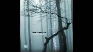 Trentemöller - Moan