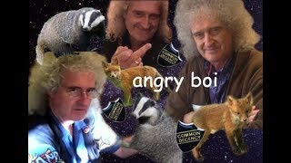 dr brian may being chaotic (but he's right)