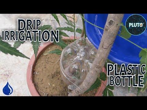 simple-drip-irrigation-setup-using-plastic-bottle-|-save-water-save-life-|-pluto-india
