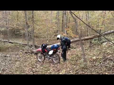 Exploring the Arkansas TAT
