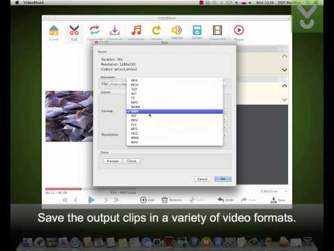 VideoBlend - View and edit videos on Mac - Download Video Previews