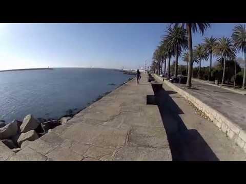 Go Local tours: Porto - Portugal - City tour
