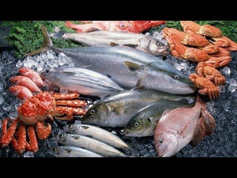 wisata-kuliner-ikan-segar-pasar-gudang-/-pasar-bawah-bandar-lampung