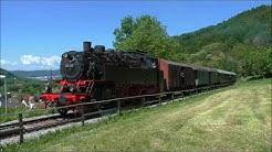 64 419 unterwegs auf der schwäbischen Waldbahn am 30.05.2019
