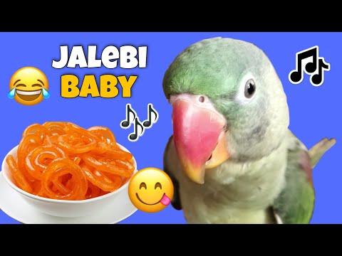 Download 😂 Jalebi Baby 😋🎶