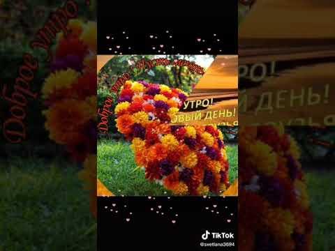 Видео из ТИК ТОКА - ДОБРОЕ УТРО!⏩04.26.2020