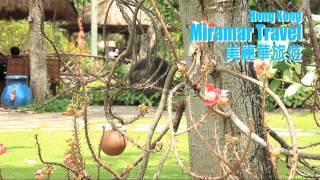 美麗華旅遊 越南 胡志明市 平桂風景區