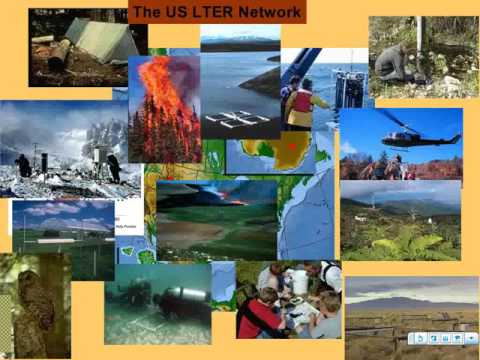 2008: Integrated Science for Society and the Environment